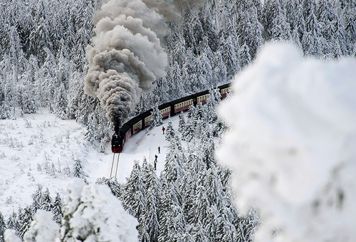 Wernigerode, Germany: A train on a narrow-gauge railway line